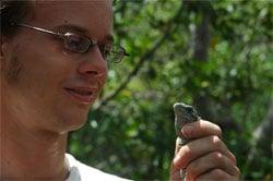 Sauvegarde des iguanes au Honduras
