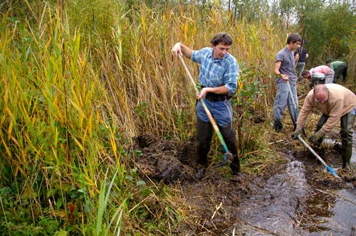 Blongios la nature en chantier. Protection de l'environnement