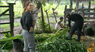 Bénévole à la ferme biologique Rio Muchacho en Équateur