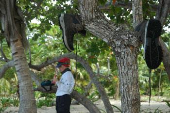Tour du monde d'une écovolontaire : la maison aux iguanes au Honduras (12)