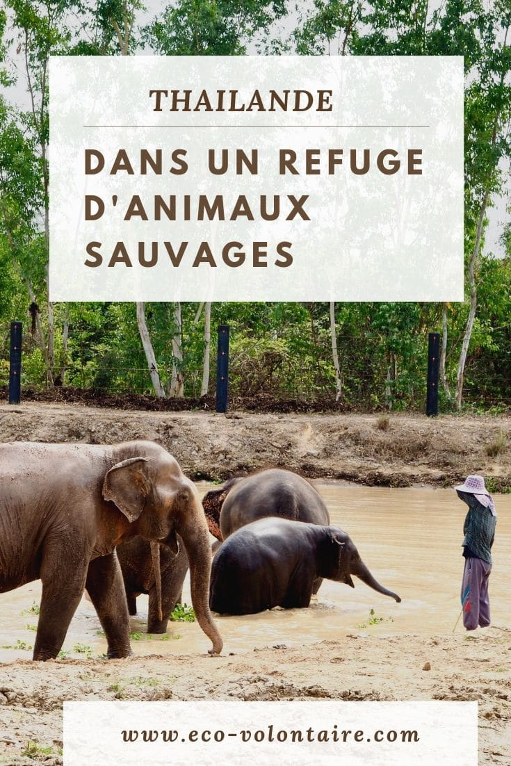 WFFT refuge d'animaux sauvages