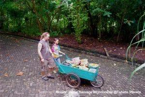 Sanctuaire pour la faune sauvage en Indonésie