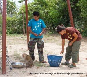 Sanctuaire d'animaux sauvages en Thaïlande.