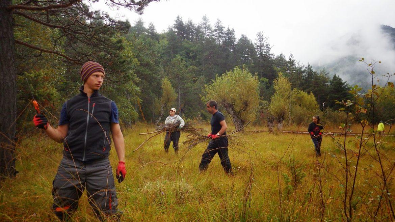 Volontaire pour la Nature
