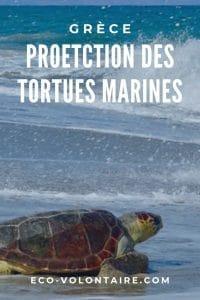 tortue marine grèce