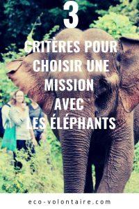 mission éléphants