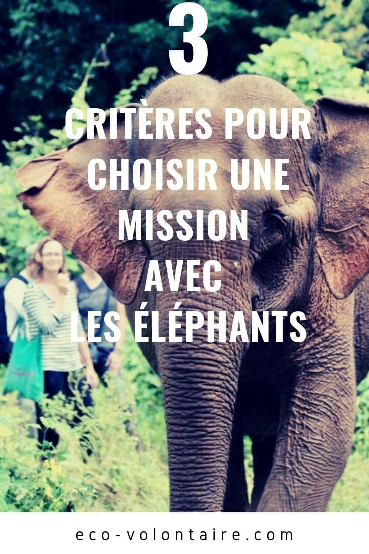 mission éléphants
