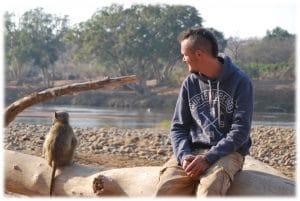 ecovolontariare babouin