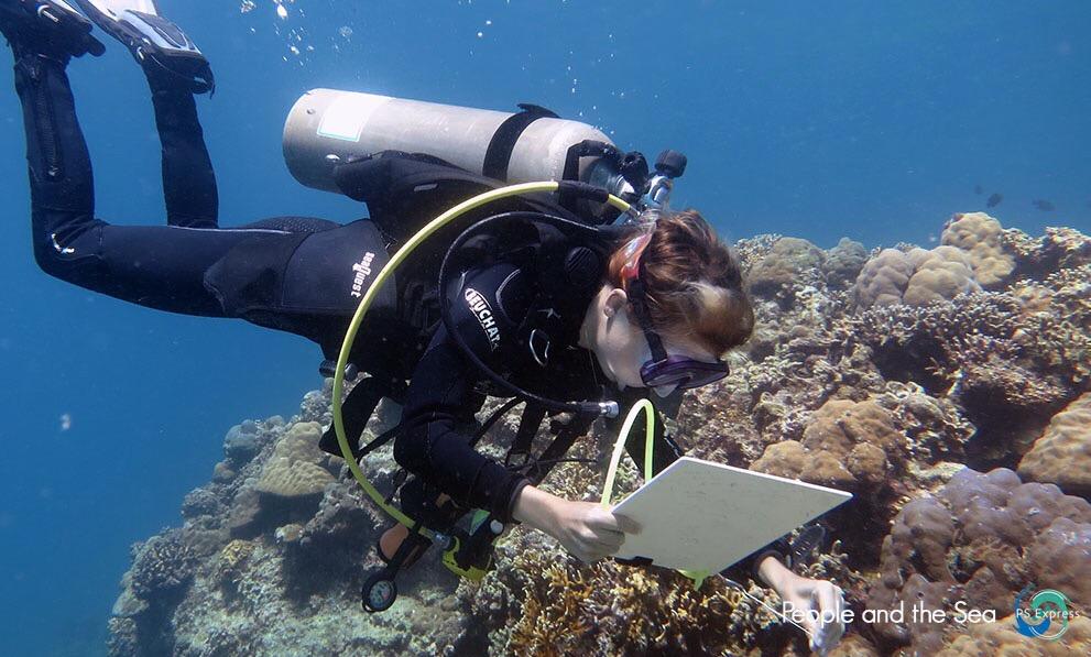 récif coralliens