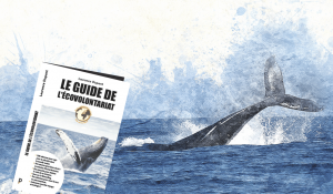 guide voyage ecovolontariat