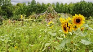 Jardin extraordinaire de Lieurac