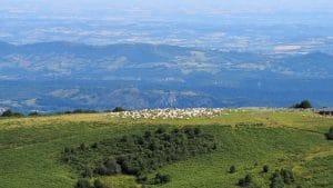 Part d'Albis Foix