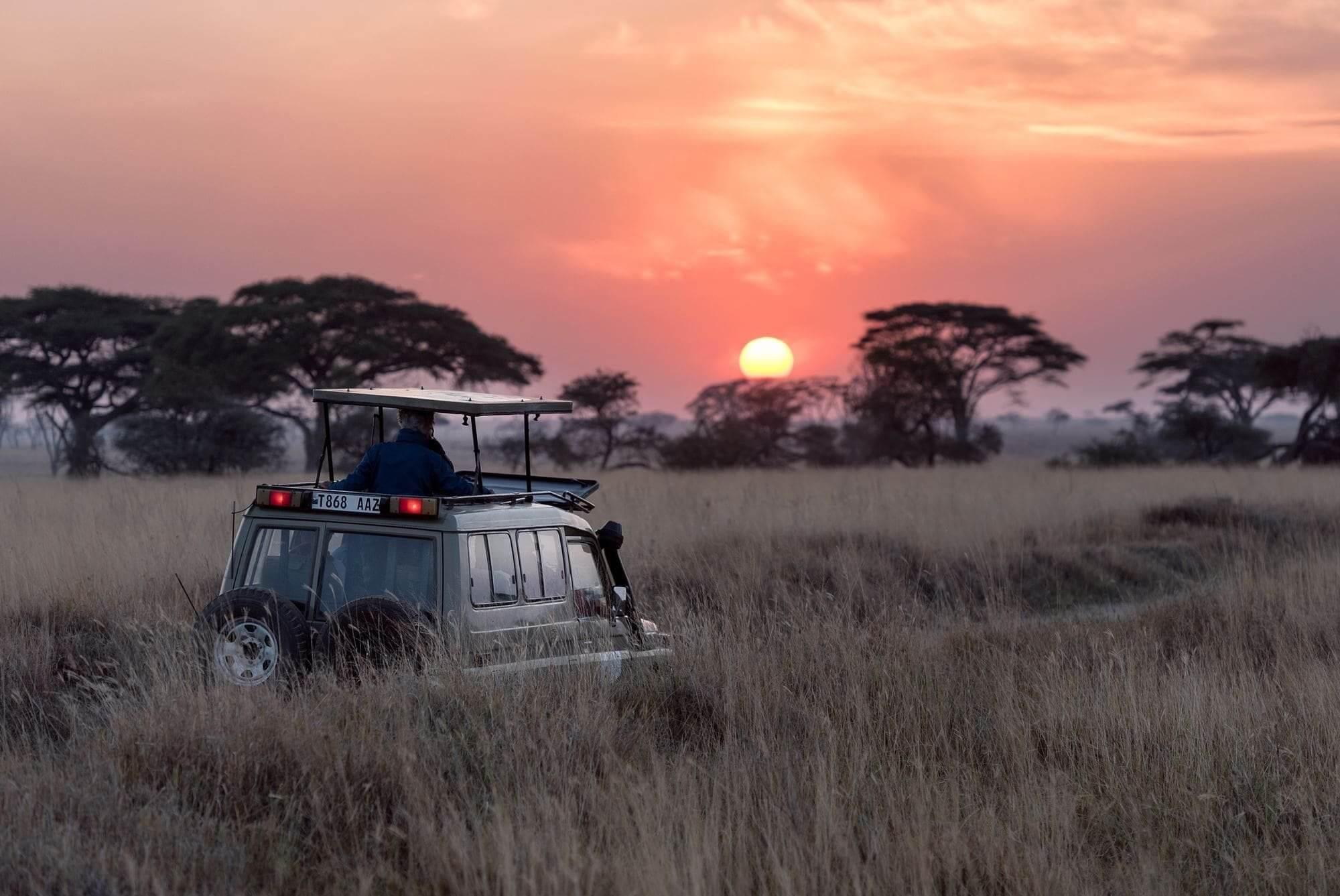 Formation vie sauvage en Afrique du Sud